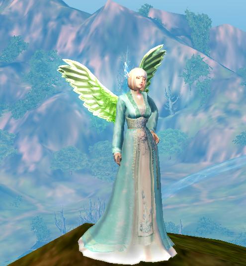 NPC Environment Daily Wings