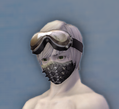 NPC Crafted Leather Head