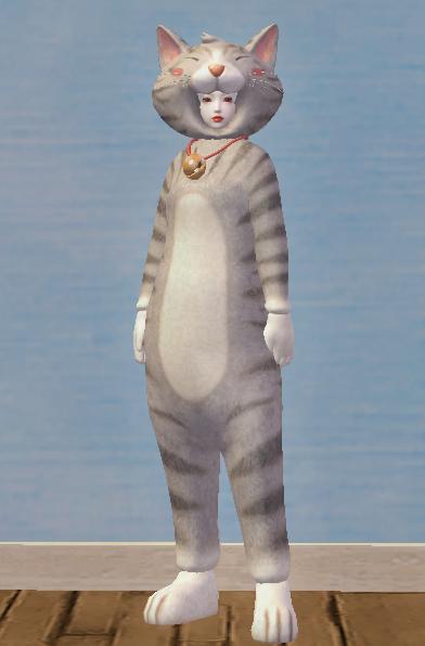 Classy Gray Cat Set