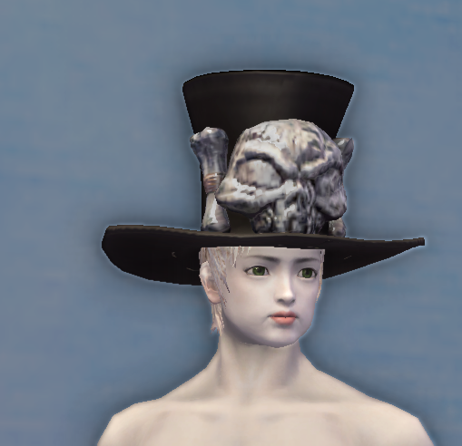 Elegant Noble Hat