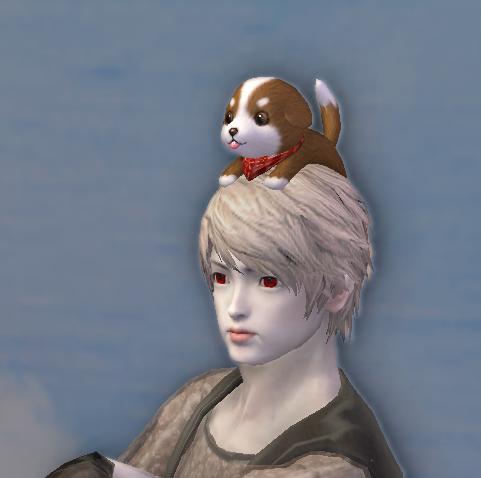 Daeva's Faithful Friend