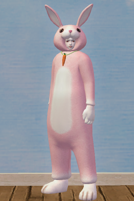 Lovely Pink Rabbit Set