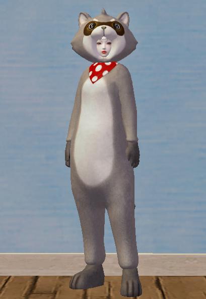 Classy Gray Raccoon Set