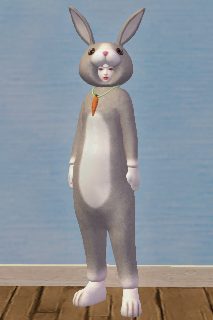 Classy Gray Rabbit Set