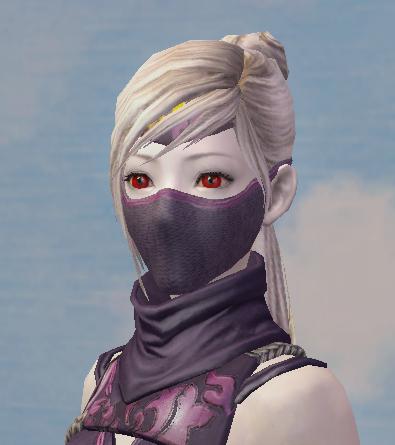Shadow Wraith Helmet