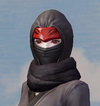 Shadow Wraith Mask