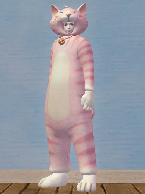Lovely Pink Cat Set